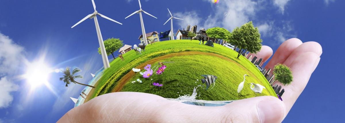 Mục tiêu và chương trình đào tạo hệ Thạc sĩ ngành Quản lý Đất đai